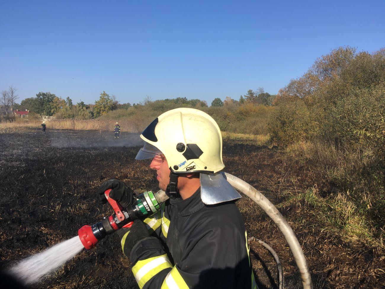 Požár rákosí rybníku Dvořiště ve Slověnicích